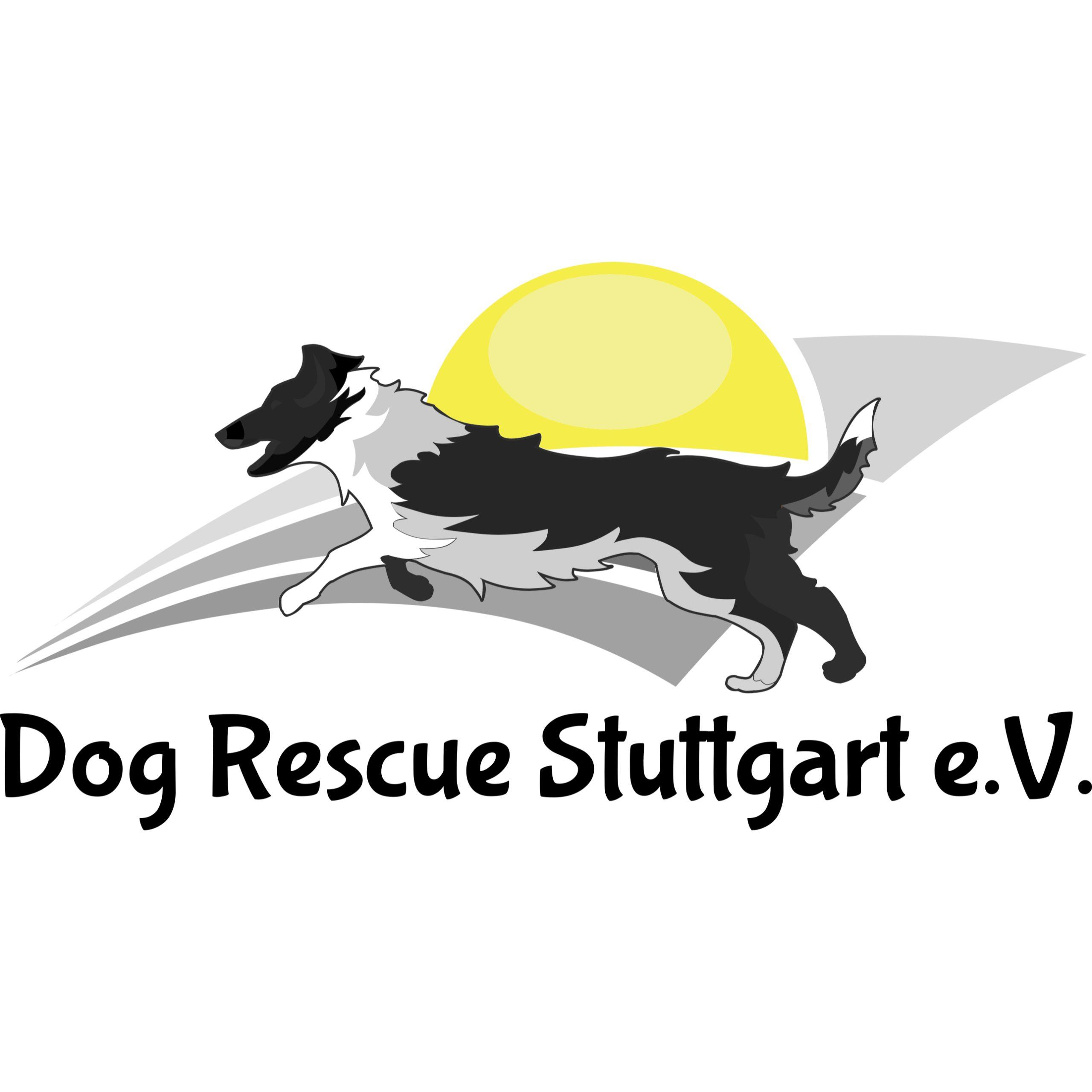 Dog Rescue Stuttgart - Rettung für Tiere in Not