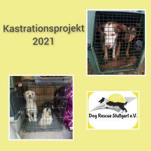 Kastrationsprojekt_2021